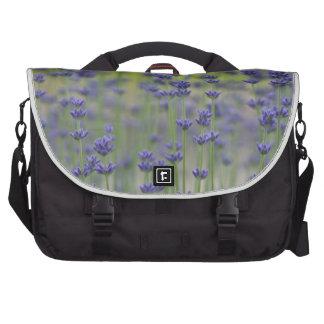 Lavender Fields Laptop Commuter Bag