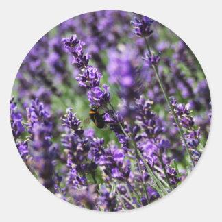 Lavender Fields Stickers