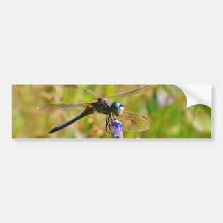 Lavender flower dragonfly bumper stickers