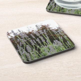 Lavender Flower Hard Plastic Coasters