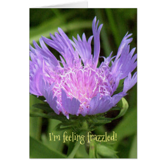 LAVENDER FLOWER WITH FRINGY PETALS/I'M FEELING FRA CARD