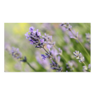 Lavender Flowers. Double-Sided Standard Business Cards (Pack Of 100)