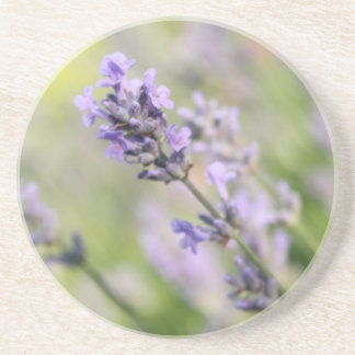 Lavender Flowers. Drink Coasters