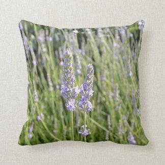 Lavender Flower Throw Pillow : Lavender Flower Pillows - Decorative & Throw Pillows Zazzle