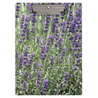 Lavender Flowers Floral Clipboard