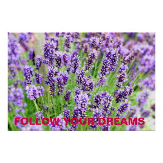 Lavender Flowers 'Follow Your Dreams' Poster