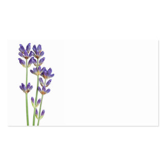 Lavender Flowers Isolated On White Background Double-Sided Standard Business Cards (Pack Of 100)