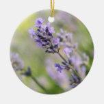 Lavender Flowers. Ornaments