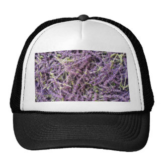 Lavender flowers pattern trucker hat