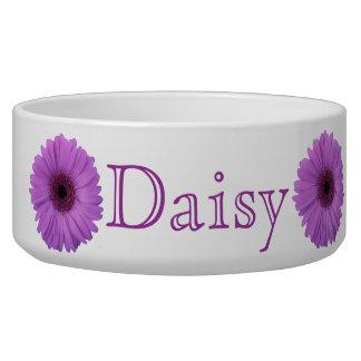 Lavender Gerbera Daisy Pet Bowl