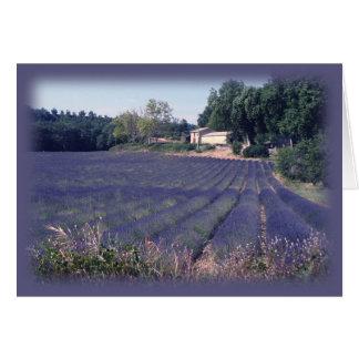 Lavender Haze Blank Art Card