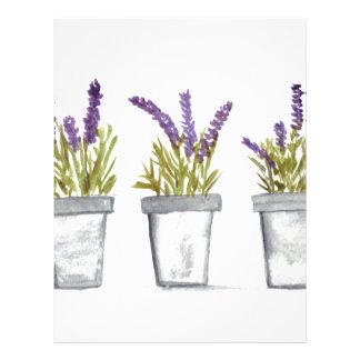 Lavender herb pots letterhead