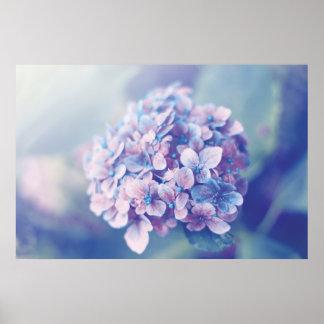 Lavender Hydrangea Print