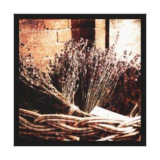 lavender in a basket canvas print