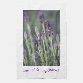 Lavender in Bloom Hand Towel
