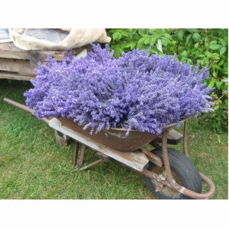 Lavender in Wheelbarrow Cut Outs