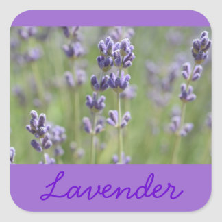 Lavender Inspired Stickers