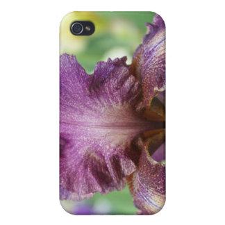 Lavender Iris iPhone 4 Covers