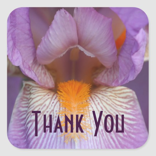 Lavender Iris Petal Flower Thank You Square Sticker
