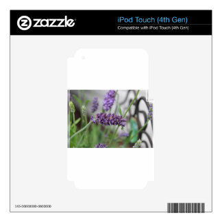 Lavender Iron Decals For iPod Touch 4G