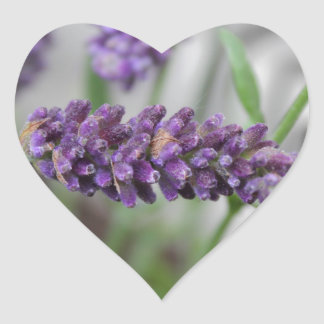 Lavender Iron Heart Sticker