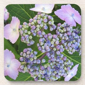 Lavender Lace Cap Hydrangea Bloom Cork Coasters