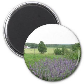Lavender Landscape Magnet