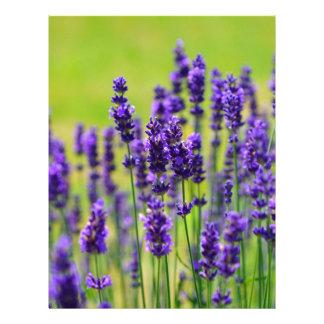 Lavender Letterhead