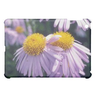 Lavender Napsbury Aster, (Aster Tongolensis) flowe iPad Mini Cases