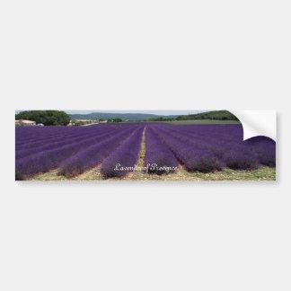 Lavender of Provence Car Bumper Sticker