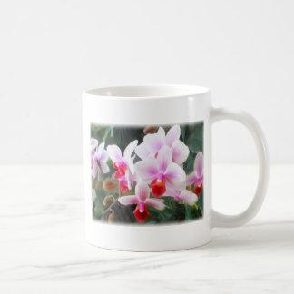 Lavender & Orange Phalaenopsis Orchids Classic White Coffee Mug