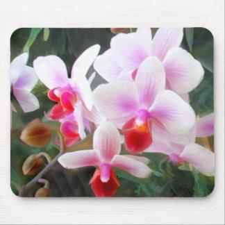 Lavender & Orange Phalenopsis Orchids Mouse Pad