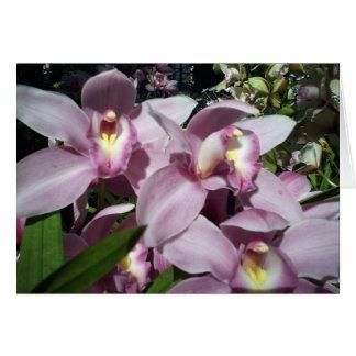 lavender orchids  card