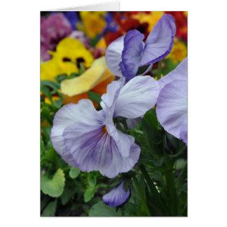 Lavender Pansies Cards