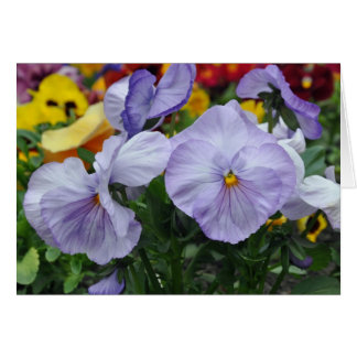 Lavender Pansies Greeting Card