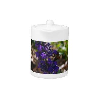 Lavender photo with honeybee
