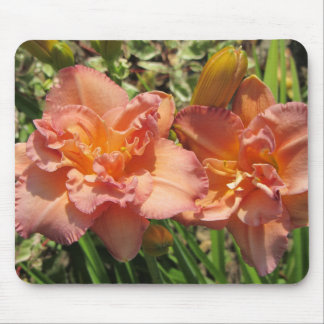 Lavender Pink Double Daylilies Mouse Pad