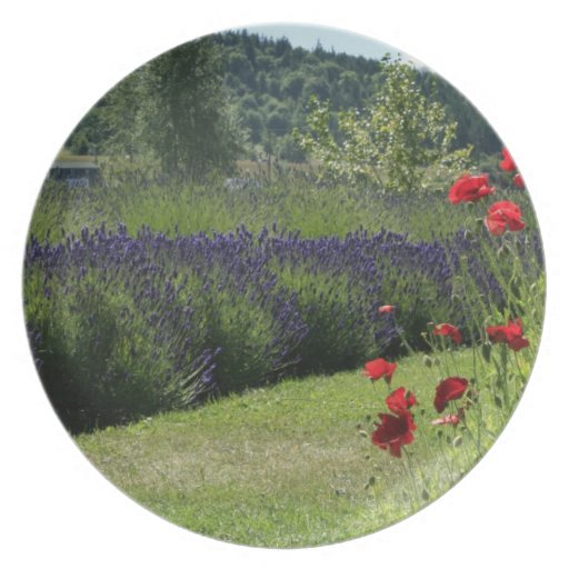 Lavender & Poppies Plate