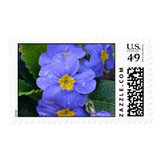 Lavender Postage Stamp