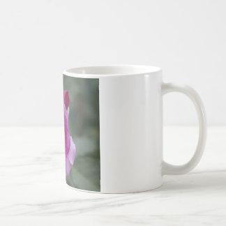 Lavender Rose Gifts Coffee Mug