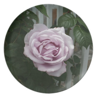 Lavender Rose Party Plate