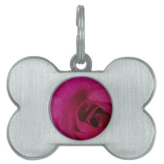 Lavender Rose Pet ID Tags