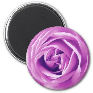 Lavender rose print 2 inch round magnet