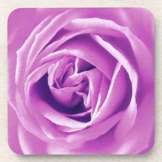 Lavender rose print beverage coaster