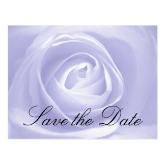 Lavender Rose, Save the Date Post Card