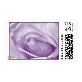 Lavender Rose Wedding Postage