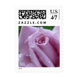Lavender Rose with Raindrops Wedding Stamp