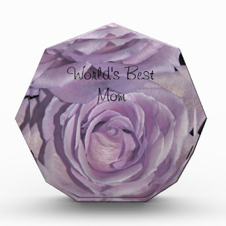 Lavender Roses collection Award
