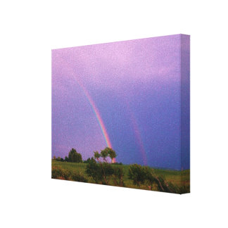 LAVENDER SKY DOUBE RAINBOW stretched canvas