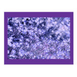 Lavender sparkly Fairy Flowers, template Post Card